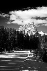 Standing (mike_mackenzie) Tags: mountain monochrome rockies alberta nikond3200
