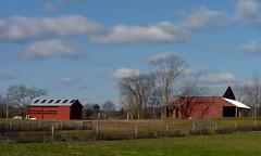 Barns (Dendroica cerulea) Tags: autumn trees sky building clouds barn buildings newjersey farm nj farmland hopewell mercercounty fav10 stmichaelsfarmpreserve
