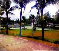 https://foursquare.com/v/taman-tasik-city-park/4b0e5e22f964a5201c5723e3 #holiday #travel #trip #green #water #garden #park #outdoor #Asia #Malaysia #negerisembilan #seremban #seremban2 #seremban2citypark # # # # # # # # # # # (soonlung81) Tags: holiday travel trip green water garden park outdoor asia malaysia negerisembilan seremban seremban2 seremban2citypark