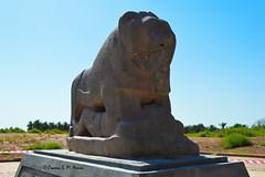 The Lion of Babylon Statue (Sumer and Akkad!) Tags: lionofbabylon statue nebuchadnezzar iraq mesopotamia babel palace lion victory
