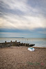 Whitstable-0040