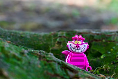 """Cheshire cat - """"If you don't know where you are going, any road will get you there"""" (Ballou34) Tags: 2016 650d afol ballou34 canon eos eos650d flickr lego legographer legography minifigures photography rebelt4i stuckinplastic t4i toy toyphotography toys rebel stuck plastic hamburg sipgoeshamburg2016 cheshire cat alice wonderland root tree green purple"""