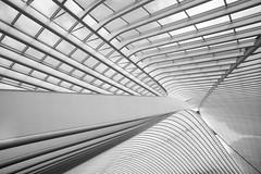 1814 (explored) (.niraw) Tags: belgien lttich bahnhofligeguillemins architektur bw niraw dach bahnhof stahl licht