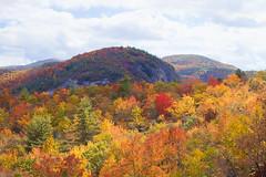 Big Green Mt (agasfer) Tags: 2016 northcarolina hiking appalachia autumn foliage colors pentax k3 topaz adjust5 smcpentaxda12435mmal panthertownvalley