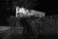 luz encanto (Rodrigo Uriartt) Tags: nightshot night lightandshadows light shadows bw bnw pb mono tripod countryside betyehoshua israel fujifilm xpro1