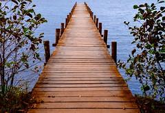 Wooden Jetty (rustyruth1959) Tags: nikon nikond3200 tamron16300mm germany lowersaxony steinhudermeer lakesteinhude jetty wood lake meer water outdoor blue leaves planks ripples