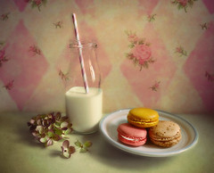 We go together. (Through Serena's Lens) Tags: milk dairy jar bottle straw stripped macaroon colorful sweet dessert cookie french confection delicious food stilllife tabletop flower hydrangea pastel assorted