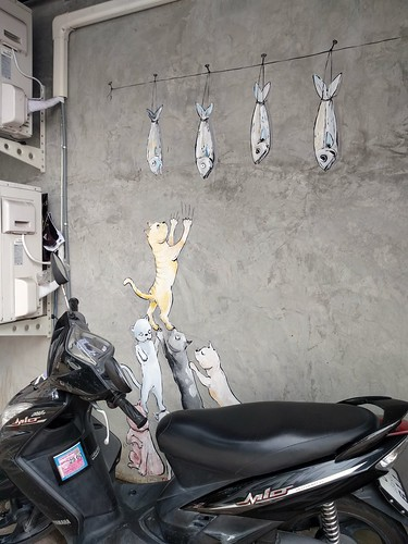 Cats and fish - Chiang Mai, Thailand (ashabot) Tags: chiangmai streetart thailand grafitti cats humor fun