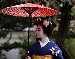 Maiko20161016_06_06 (kyoto flower) Tags: eiunin temple toshimomo kyoto maiko 20161016     hiseongkim
