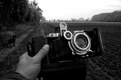 Moskva 2 (salparadise666) Tags: nils volkmer moskva2 folder camera vintage industar 23 6x9 bw monochrome niedersachsen hannover calenberger land germany ilford fp4 caffenol rs