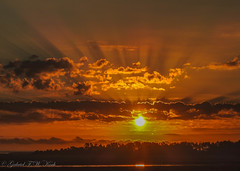 20 October Sunrise (Gabriel FW Koch (fb.me/FWKochPhotography on FB)) Tags: sunrise sun sunlight panorama scenic landscape marsh outdoor outside morning beautiful pretty awesome telephoto nikon p900