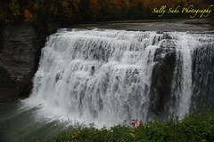 IMG_9582 (Sally Knox Sakshaug) Tags: letchworth state park new york fall autumn october colors leaf leaves orange yellow stone grey gray brown green red beautiful pretty scenic gorge ravine cliff wall edge side river water valley deep crevice waterfall white spectacular falls beauty middle large major mighty strong powerful impressive awe inspiring genesee portagecanyon