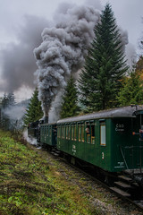 4296 (michalvboh) Tags: train trains steamtrain steamlocomotives cogtrain