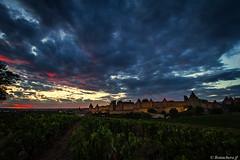 Carcassonne-043 (bonacherajf) Tags: aude carcassonne sunset citmdivale vignes coucherdesoleil remparts