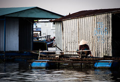 Mekong 02 (arsamie) Tags: mekong river saigon vietnam asia hat triangle rice floating village house woman boat tho cai be