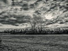 Tattershall, Lincolnshire (Reynard_1884) Tags: microfourthirds olympus england lincolnshire greatbritain micro43rds em5 mu43 olympusomdem5 mirrorless uk olympusomd