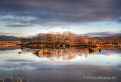 Evening light on Loch Ba (silverlarynx) Tags: scotland rannoch moor lpch ba evening light reflections trees winter