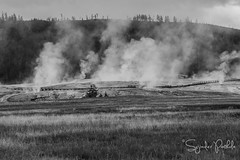 _DSC7319 (sujinderp) Tags: fall landscapephotography montanan nps northamerica october sujinderpothula usa wyoming yellowstonenaitionalpark eruption geyserbasin steam thermalfeature