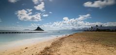 Mokolii (the CAMera of ian CAMpbell; simple) Tags: mokolii hawaii oahu sea china chinaman hat islet sand shore palm tree trees waves