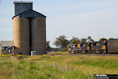 6 October 2016 TT02 TT07 TT128 NB998 loaded coal Baan Baa grain silo (RailWA) Tags: railwa philmelling nsw 2016 tt02 tt07 tt128 nb998 loaded coal baan baa grain silo