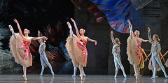 Lead flowers (DanceTabs) Tags: dance ballet brb birminghamroyalballet hippodrome dancing dancers
