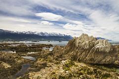 Kaikoura - New Zealand (Kathy Reid. NZ) Tags: kaikoura newzealand mountains coastal sea limestone rockpools clouds