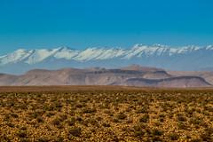 IMG_6394 (Israel Filipe) Tags: marrocos