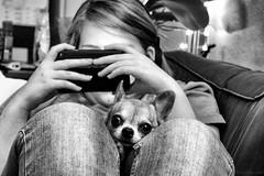 Zita & Essi (Joni Mansikka) Tags: daughter dog pet chihuahua bw indoor blackandwhite canonef75300mmf456ii