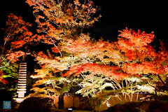 Tohoku 2016 - 504 (西文 Simon) Tags: 日本東北 miyagigun miyagiken 日本
