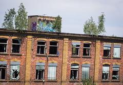 _DSC0959 (Under Color) Tags: leipzig graffiti lost places urban exploring leipsch walls