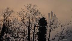le chateau de pierrefonds dans la brume. (gillesfournier005) Tags: chateau brume d5100 arbres