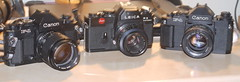 slrs (contaxcontax) Tags: leica r3 canon f1 film 35mm