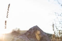 Pico de ngstrm (Tono Carbajo) Tags: caminar utopia arcilla arguila argilesdanguera
