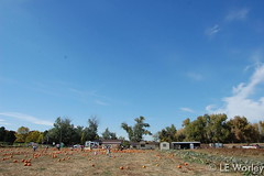 October 17, 2015 - The Eastlake pumpkin patch on a very warm day. (LE Worley)