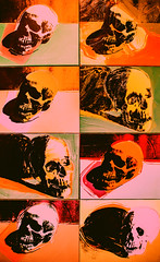 The Way I'm Living Is Going to Kill Me (Thomas Hawk) Tags: sanfrancisco california usa museum painting skull unitedstates unitedstatesofamerica sfmoma andywarhol warhol soma sanfranciscomuseumofmodernart
