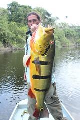 Amazonia 2012 (75)
