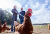 2015_10_12_Krust_0382.jpg (Christian.Patrick) Tags: alsace production poule ferme lieux oeuf hautrhin krust eteimbes fermedeloréedubois