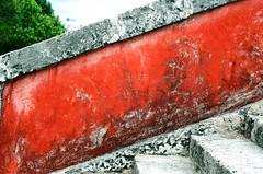Vizcaya - Miami (littlesubutai) Tags: red texture film 35mm walls vizcaya