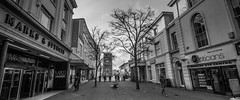 Two Trees (pootlepod) Tags: street trees people blackandwhite monochrome shopping photography pavement shops newton abbot sidework canon60d