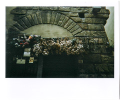 Florence (Shasta's) Tags: voyage travel party sky orange sun church birds soleil florence italia christian ponte bleu ciel journey firenze nuage toscane palazzo glise ail nourriture italie oiseaux argentique vecchio toscany baptistre plazza