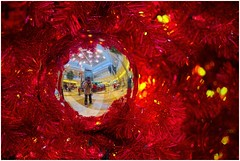 A Christmas Mall Selfie (sorrellbruce) Tags: christmas decorations mall fun holidays colorful fuji dof seasonal humor depthoffield celebrations selfies lr6 photoninja framefun fujixt1 fujinon56mm