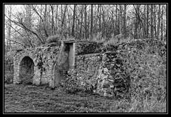 Vestiges du moulin de Douvres - Torcy (DavidB1977) Tags: bw france moulin nikon nb iledefrance ruines marne seineetmarne vestiges torcy d7100