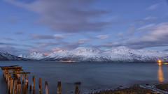 An Arctic dawn along Ullsfjord (lunaryuna) Tags: panoramicviews landscape norway arcticregion tromsfylke ullsfjord lyngenalps svensby ferrypier arcticdawn winter season seasonalwonders fjord mountainrange snowcoveredmountains piling arctictwilight clouds cloudscape le longexposure thecoloursofcold lunaryuna ngc