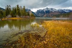 Phelps Lake (scepdoll) Tags: phelpslake grandtetonnationalpark wyoming rockefellercentre moosewilsonroad aurancesrockefellerpreserve