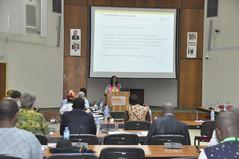 Busie Maziya-Dixon speaking at Gari Revolution Workshop (IITA Image Library) Tags: workshops gari cassava manihotesculenta iitaibadan