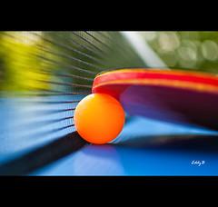Ping Pong Close-Up (EddyB) Tags: nikon d300s eddyb nikkor35mmf18 pingpong closeup bokeh red net pelotadepingpong paladepingpong deporte sport desenfoque