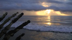 NOOOO!  Not Dawn!  Anything but dawn! (Jaye Eryk) Tags: halloween zombie corpse rot rotting bones skeleton sunrise clouds beach water ocean fear dark macabre production filming prop