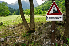 Dahu (joestammer) Tags: italia italy alpi alps dahu signpost vallestura