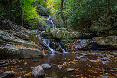 1H5A5388 (j.pearce) Tags: spruce flats falls gsmnp great smoky mountains national park