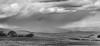 rain showers (Denis Fox) Tags: rain mt buller 2016 october black white open garden glenroy